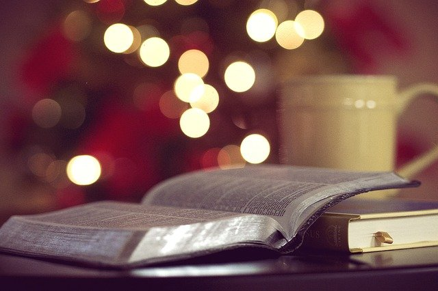 Classifica libri da regalare a Natale 2018