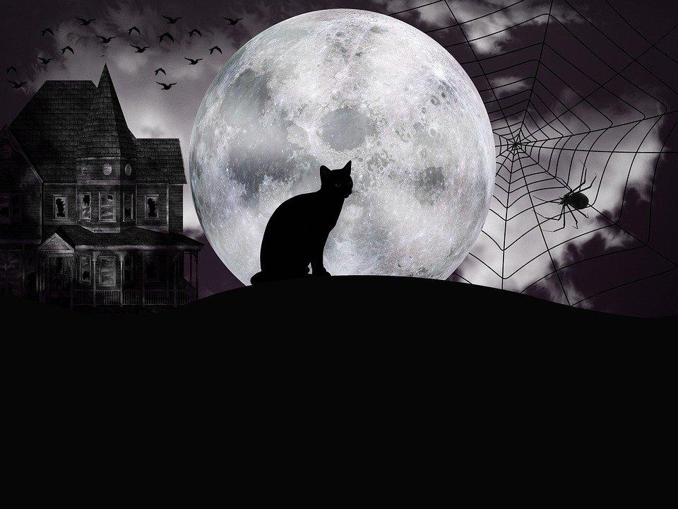 Consigli e idee per dolcetto e scherzetto per Halloween